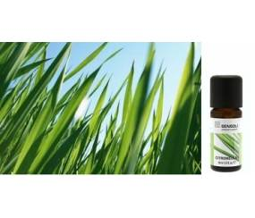 MS-EOCN Citronella Essential Oil