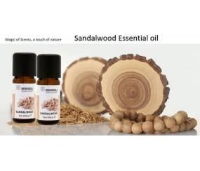 MS-EOSW Sandalwood / Sensoli Essential Oil
